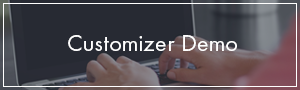 Customizer Demo  Download Colors – Simple Blog & Magazine WordPress Theme nulled button customizer